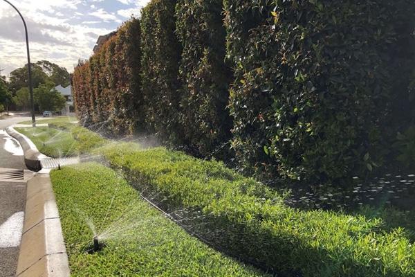 irrigation plan 4