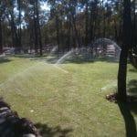 new turf installation watering